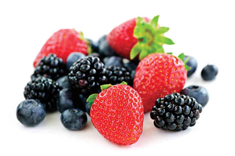Health benefits of Berries: Fruits Pregnant Women Should Eat for Safe Delivery: fruits to eat during pregnancy,fruits to eat during pregnancy for fair baby,fruits not to eat during pregnancy,foods to eat when pregnant first trimester,pregnancy diet menu,what to drink during pregnancy,foods to avoid in first month of pregnancy,foods to eat during pregnancy week by week, pregnancy food chart,pregnancy superfoods,activities to avoid during pregnancy,foods to avoid during early pregnancy,foods to eat during pregnancy week by week,first month of pregnancy care, can you eat mayonnaise when pregnant,indian foods to avoid during pregnancydiet in pregnancy for fair baby,pregnancy diet plan first trimester pdf, best yogurt brand for pregnancy,first trimester care,tips during pregnancy,pregnancy breakfast recipes,2nd month of pregnancy what to eat,healthy snacks for pregnancy first trimester,first trimester diet indian, 12 week pregnancy diet,ice cream pregnancy first trimester,foods to avoid in first month of pregnancy,best cereal for pregnancy uk,foods to eat when pregnant second trimester,5 weeks pregnant dos and don ts,foods to eat when pregnant third trimester,sugar detox while pregnant,first trimester diet in hindi,first trimester diet for baby boy,first trimester diet chart in hindi, 6 week pregnancy food chart,4 weeks pregnant do's and don'ts,why is the first trimester so hard