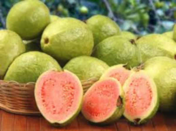 Guava fruits, Fruits Pregnant Women Should Eat for Safe Delivery: fruits to eat during pregnancy,fruits to eat during pregnancy for fair baby,fruits not to eat during pregnancy,foods to eat when pregnant first trimester,pregnancy diet menu,what to drink during pregnancy,foods to avoid in first month of pregnancy,foods to eat during pregnancy week by week, pregnancy food chart,pregnancy superfoods,activities to avoid during pregnancy,foods to avoid during early pregnancy,foods to eat during pregnancy week by week,first month of pregnancy care, can you eat mayonnaise when pregnant,indian foods to avoid during pregnancydiet in pregnancy for fair baby,pregnancy diet plan first trimester pdf, best yogurt brand for pregnancy,first trimester care,tips during pregnancy,pregnancy breakfast recipes,2nd month of pregnancy what to eat,healthy snacks for pregnancy first trimester,first trimester diet indian, 12 week pregnancy diet,ice cream pregnancy first trimester,foods to avoid in first month of pregnancy,best cereal for pregnancy uk,foods to eat when pregnant second trimester,5 weeks pregnant dos and don ts,foods to eat when pregnant third trimester,sugar detox while pregnant,first trimester diet in hindi,first trimester diet for baby boy,first trimester diet chart in hindi,6 week pregnancy food chart,4 weeks pregnant do's and don'ts,why is the first trimester so hard