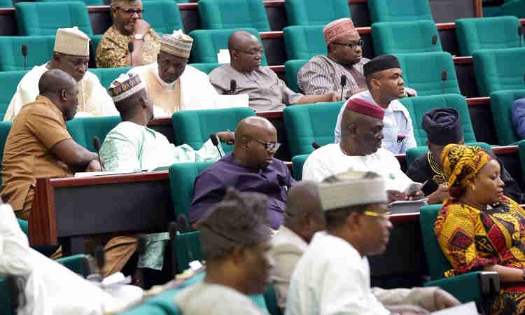 Reps Accuse Neighbouring Countries Of Promoting Insecurity In Nigeria